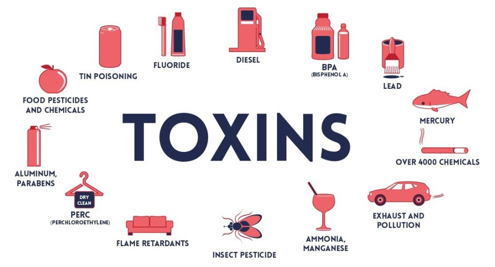 Toxin Graphic 2