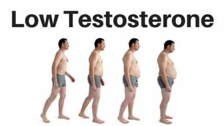 lower testosterone e1496 - 9 (Nine) Hormones That Lead to Weight Gain and Ways To Avoid It