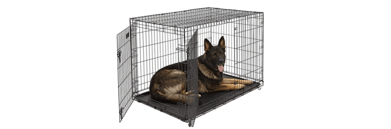 How to Crate Train Your Dog   For Safety & Peace of Mind