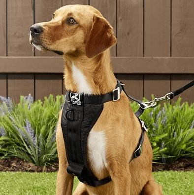 Dual-Clip-Dog-Harness