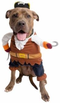 Pet Krewe Pirate Costume for Dogs