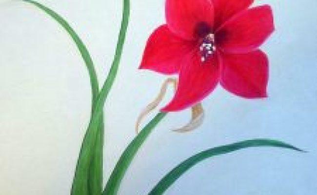 Lukisan Bunga Sederhana Jual Poster Di Juragan Poster Cute766