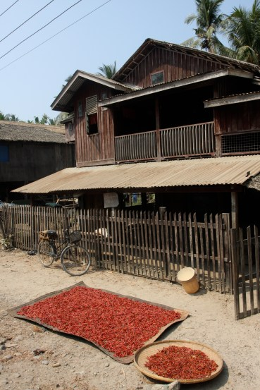 House with drying chilies in Lontha Village