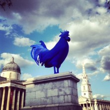 The Blue Cock at Trafalgar Square