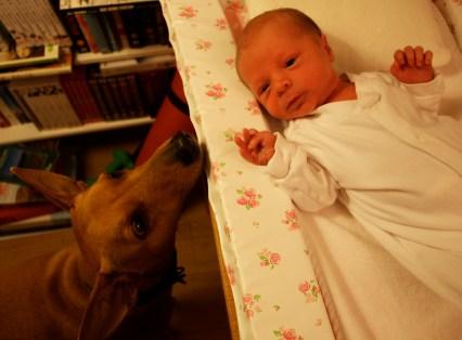 Tala and Wilfred (one week)