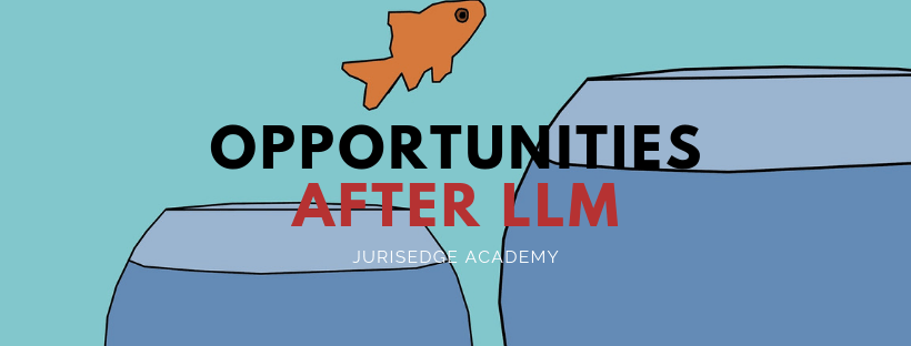 opportunities after llm