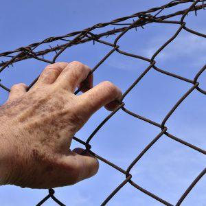 La reinserción social de los penados extranjeros