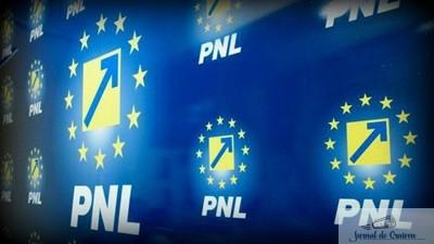 PNL Dolj: Marijean, sustinut pentru un nou mandat. Candidatii de primar, stabiliti pana la finele anului. Stoica: Domnul Manda sa faca o comisie de ancheta la SRI sa afle cine a mancat coada purcelusului. 1