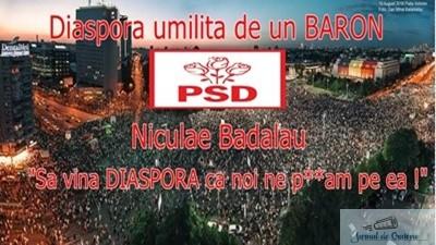 "Niculae Badalau, PSD : ""Sa vina Diaspora ca noi ne p***m pe ea !"" 1"