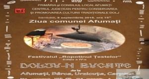 Dolju-n bucate face popas la Afumati in Dolj, de Ziua comunei 8