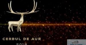 Festivalul ''Cerbul de Aur'' 2018 - la final, dar un nou inceput pentru organizatori 8