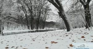 RAADPFL Craiova inchide parcurile din municipiu 17
