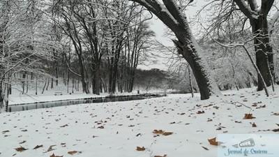 RAADPFL Craiova inchide parcurile din municipiu 1