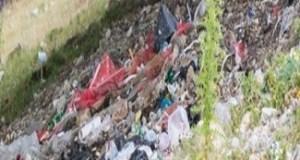 Saci de gunoi aruncati pe Transalpina 1