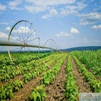 Oficialii SUA fac presiuni asupra UE pentru rezolvarea problemelor din domeniul agriculturii 1