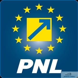 Administratia PSD – groparul democratiei in Craiova 1