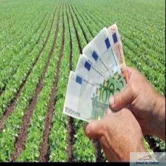 Tinerii fermieri: 1 miliard de euro pentru facilitarea accesului la finantare! 1