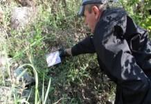 Salubritate Craiova : Începe prima etapă de deratizare pe domeniul public din acest an