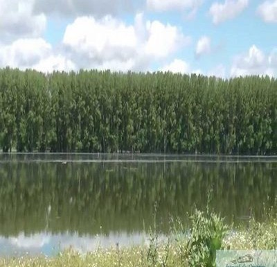 Trupul băiatului de 17 ani dispărut în Dunăre, la Ciupercenii Vechi, a fost găsit