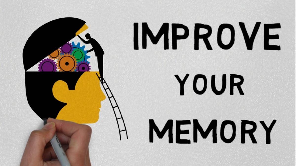 Tips Anak Tumbuh Cerdas Dengan Melatih Daya Ingat  Jurnal