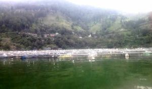 Foto :  KJA Liar Di Kawasan Danau Toba Simalungun