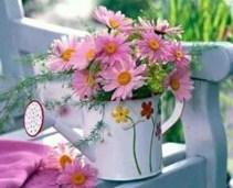 Stropitoare cu flori