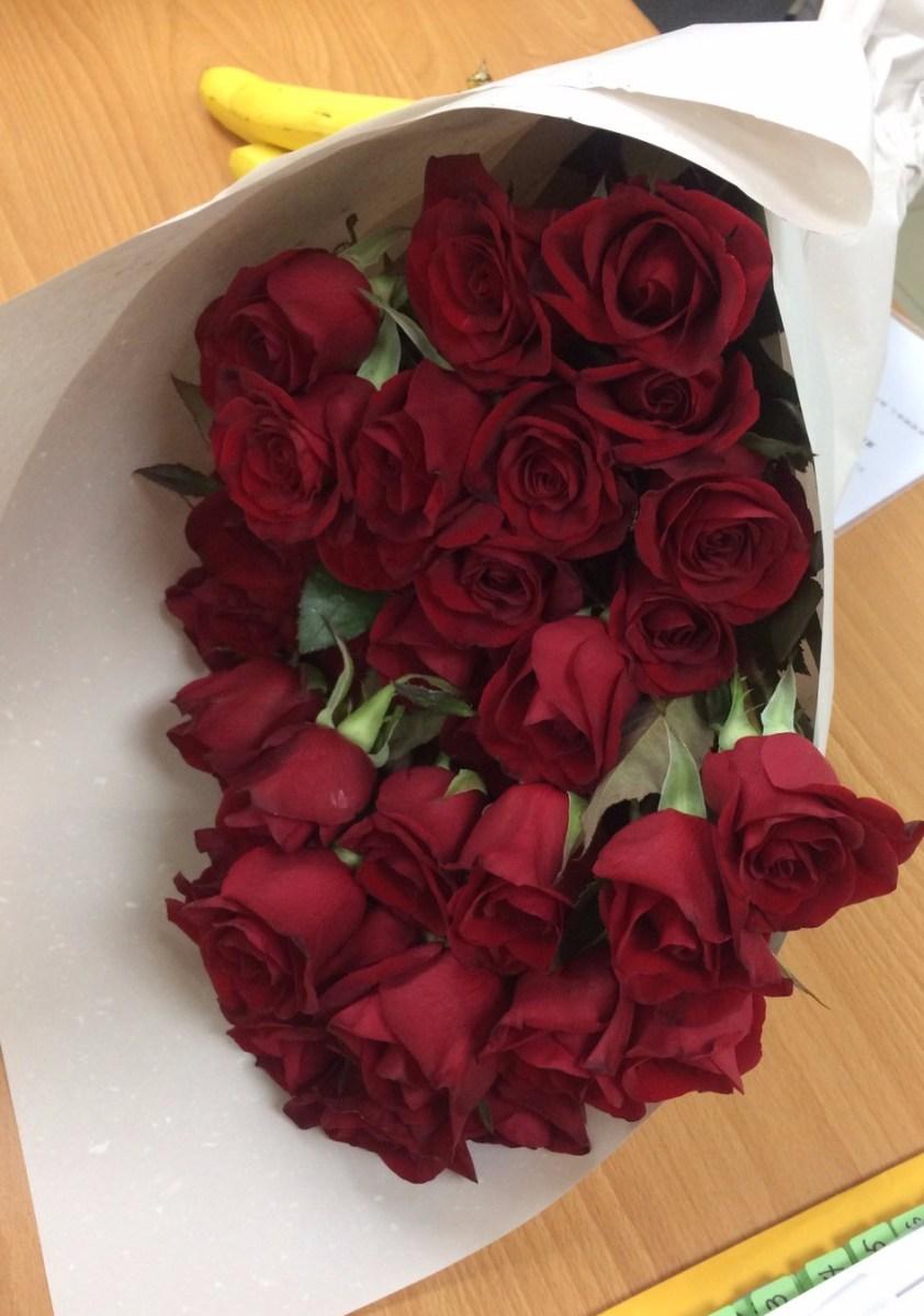 沙漠中也能種玫瑰 花瓣全落前野獸也能變王子 – 臺灣陪審團協會