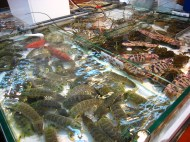 Shrimps and flower crabs; Lei Yue Mun