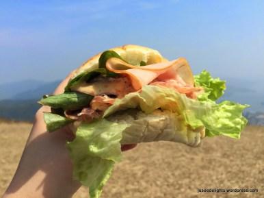 DIYed Sandwich; Ngong Ping picnic