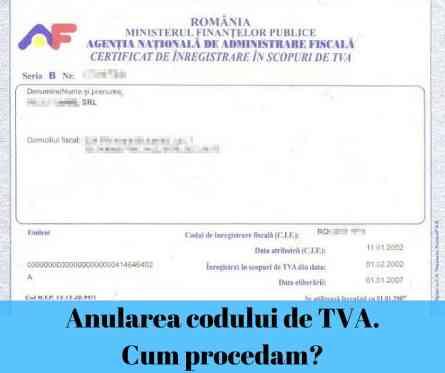 Anularea codului de TVA. Cum procedam-