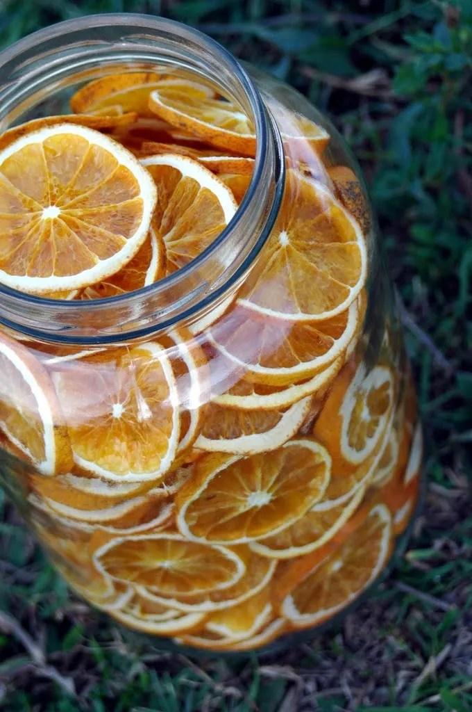 Crispy Orange Chips   Dehydrator Snack Hacks   where to buy food dehydrator