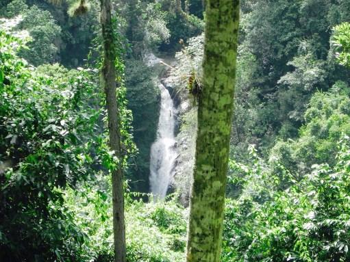 Wasserfall Jarabaco