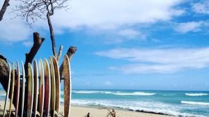 Bücher über Surfen