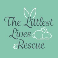 The Littlest Lives Rescue wishlist