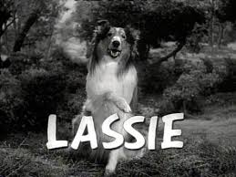 Lassie - Just About TV