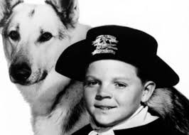 Rintintin - Just About TV