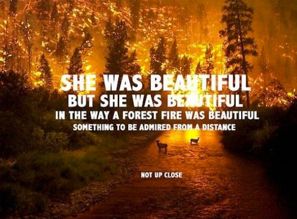 Forest Fire Beauty