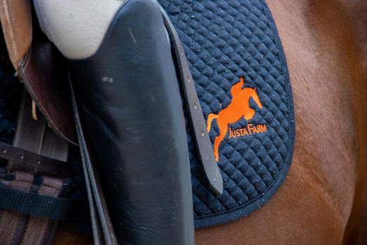 A Justa Farm horse sales logo on the flap of a saddle on a brown horse.