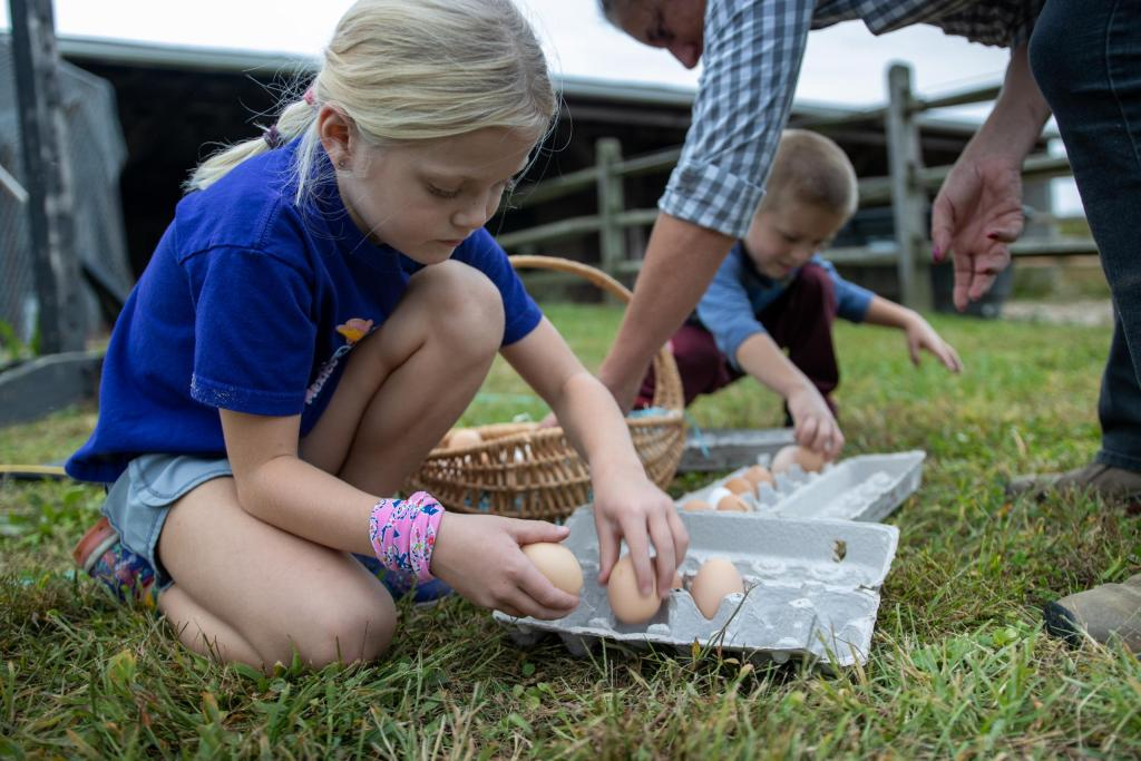 Children collect cage-free eggs outside the chicken coop.