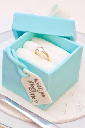 proposal-cake2_br_13jan_12_pr_b-1
