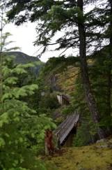The train tracks below