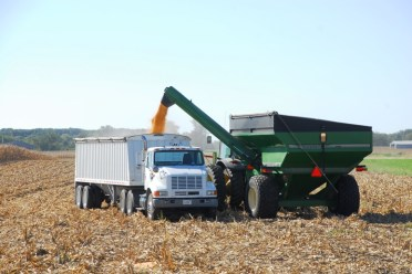Loading Semi with Grain Cart