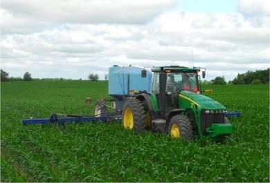 Sidedressing corn