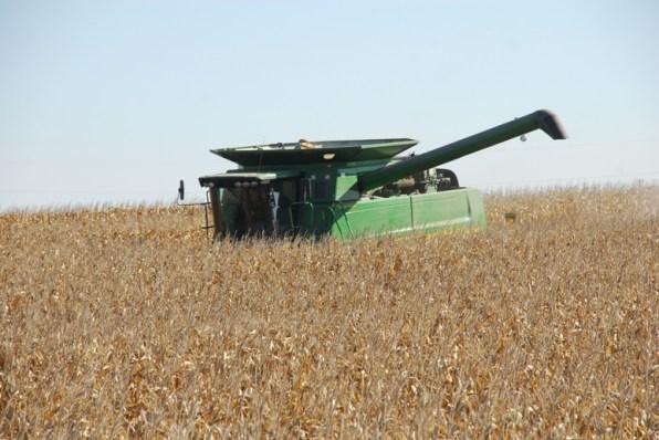 Harvesting corn in 2010