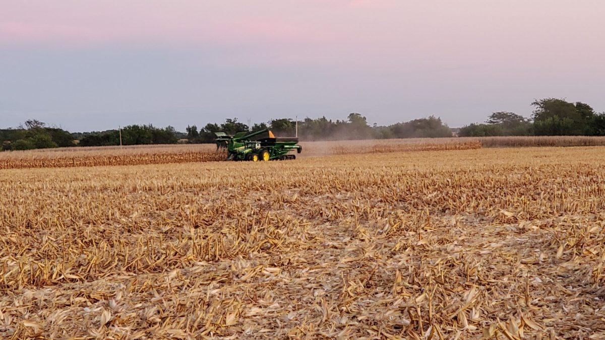 Combining Corn Doenitz