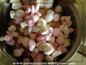 Marshmallow Slice 4