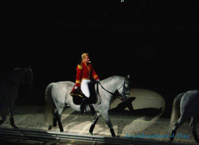 Lipizzaner performance in Colorado Springs