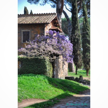 The Appia Antica is one of my favorite spots in Rome. I adore hiking along the wide ancient cobblestones beneath the umbrella pines. This is one of the quaint places you'll find along the way.