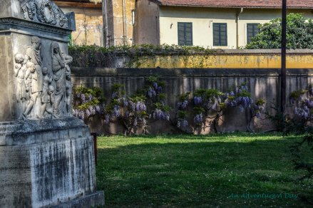 wisteria walls and markers