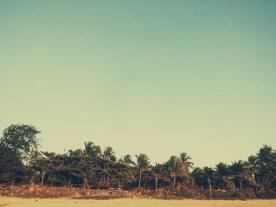justaparna_beach_WestCoast_India (12)